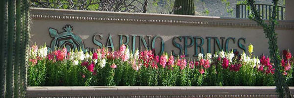 sabino_springs_tucson_arizona